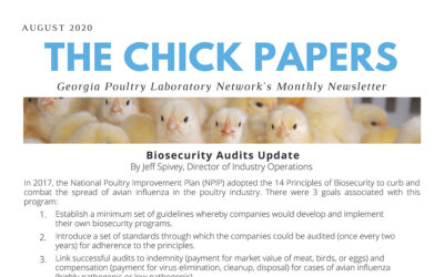 The Chick Papers